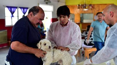 Castración gratuita de mascotas en el Sindicato de Empleados de Comercio