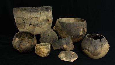 ¿Cómo era el consumo de leche en Europa hace 7 mil años?