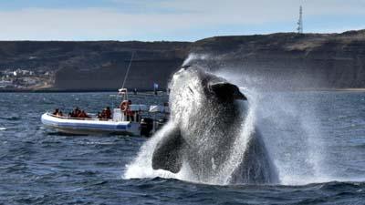 Turismo: Analizan estrategias para abrir temporadas en Chubut