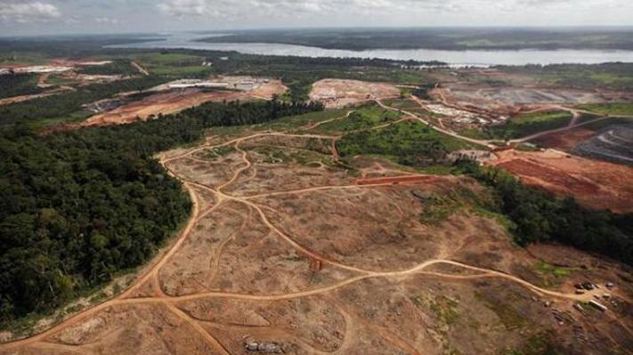 A pesar de la pandemia, en el 2020 aumento la destrucción de los bosques tropicales
