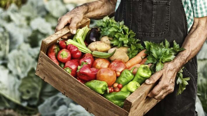 Alimentos: Los consumidores pagan hasta 14 veces lo que recibe el productor